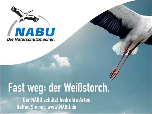 storch_bunt